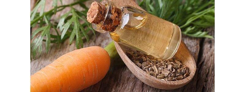 Aceite Puro de Zanahoria