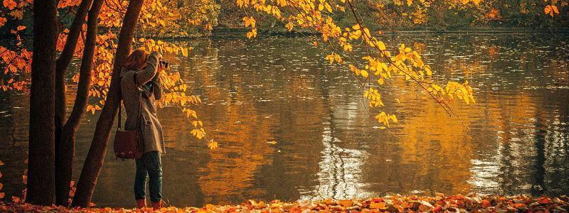 Viene el otoño, que caigan las hojas... no tu pelo!