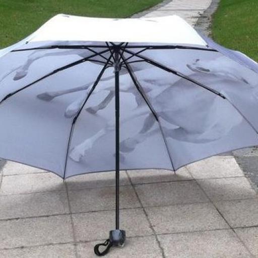 Paraguas caballos blancos [1]