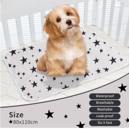 Pañal lavable para perros