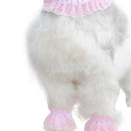 Moda Fhasion para Perros [1]
