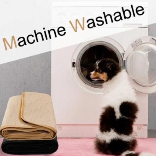Pañal lavable para perros [3]