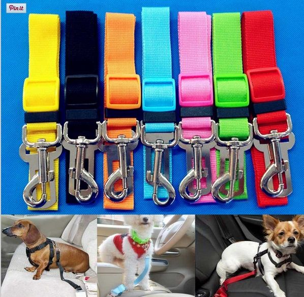 Cinturón de Seguridad Nylon colores