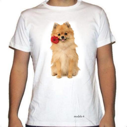 Camiseta Pomerania