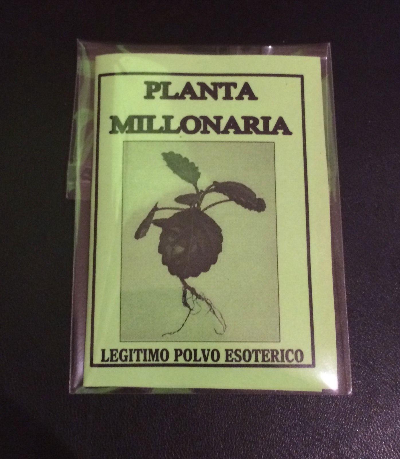 LEGITIMO POLVO ESOTERICO PLANTA MILLONARIA