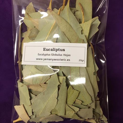 EUCALIPTUS 20 gr. [1]