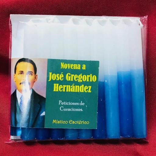 NOVENA SAN JOSE GREGORIO HERNANDEZ ( CURACIONES, SALUD)