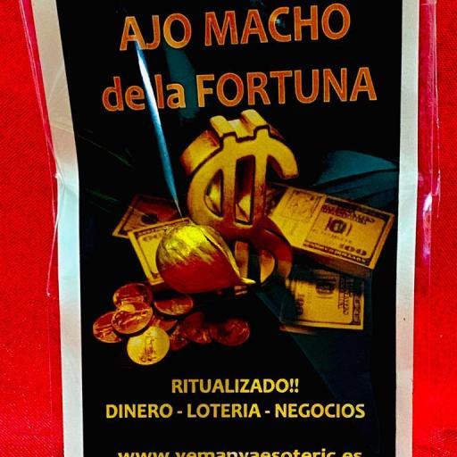 AJO MACHO DE LA FORTUNA - AMULETO PARA DINERO, LOTERIA, NEGOCIOS....