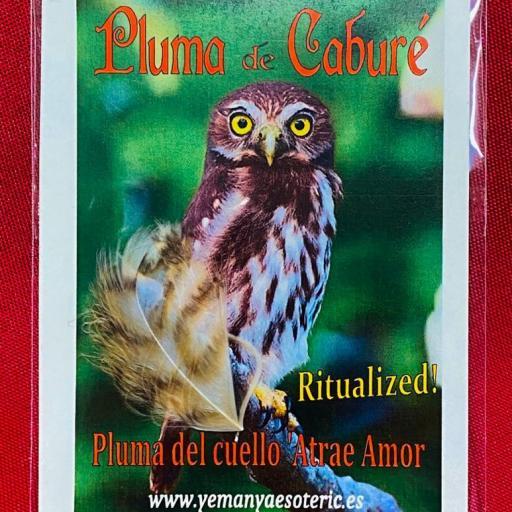 AMULETO PLUMA DE CABURE ( CUELLO )