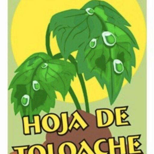 "POLVO ESOTERICO ESPECIAL ""HOJA DE TOLOACHE """