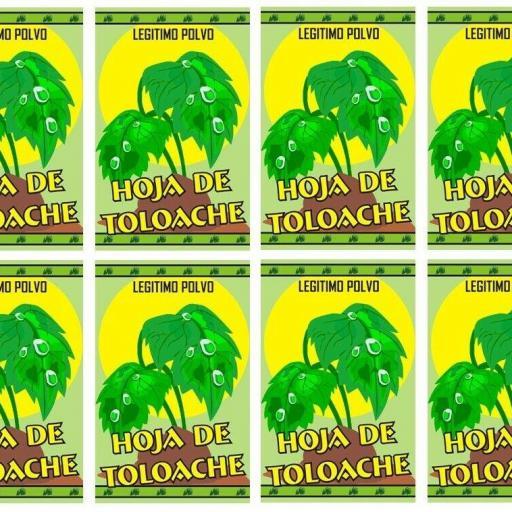 """LOTE X 8 POLVO ESOTERICO ESPECIAL """" HOJA DE TOLOACHE """""""