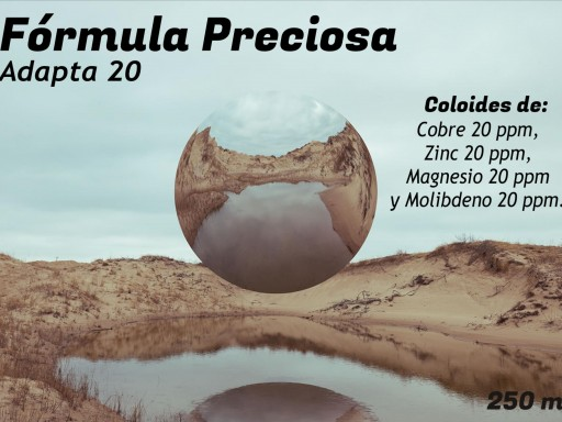 FORMULA PRECIOSA ADAPTA 20 PPM, 250 ML