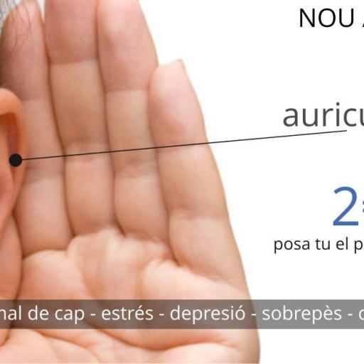 SEGUIMIENTO PESO+BIORESONANCIA+3D [2]