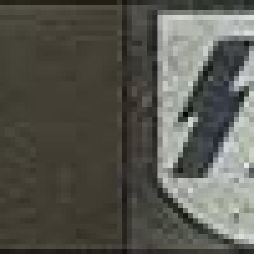 Casco Militar SS, Alemania / WWII [2]