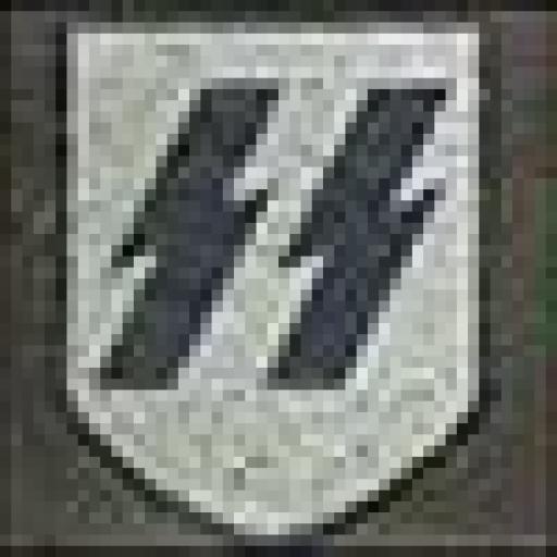 Casco Militar SS, Alemania / WWII [3]