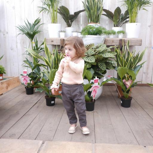 Pantalones niño y niña 1-10 años -PDF-