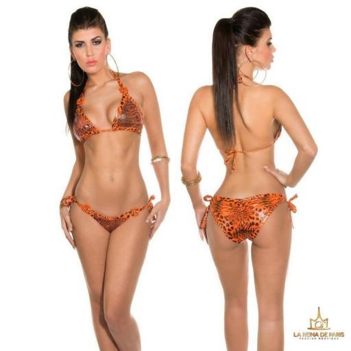 Bikini atractivo Brillante Boreal