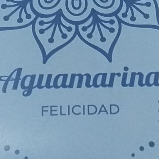 Pulsera Chip Aguamarina [1]