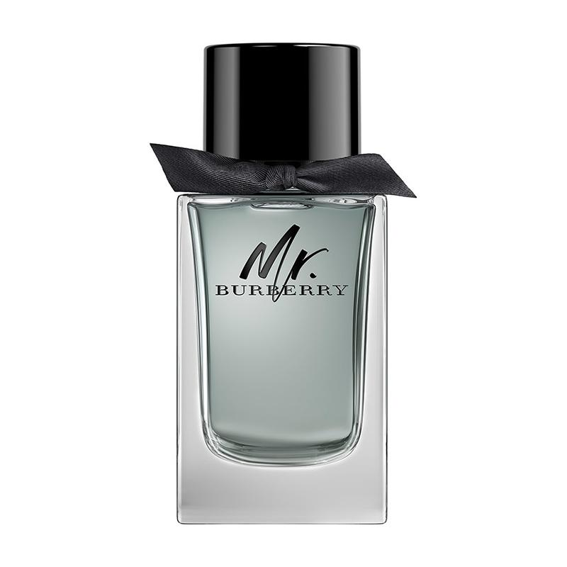 BURBERRY MR. BURBERRY EDT 100ML TESTER