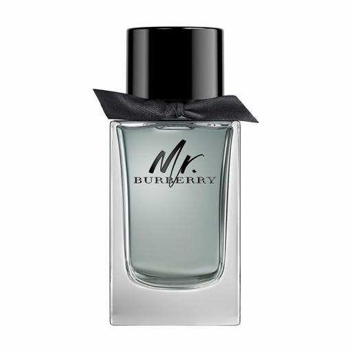 BURBERRY MR. BURBERRY EDT 100ML TESTER [0]