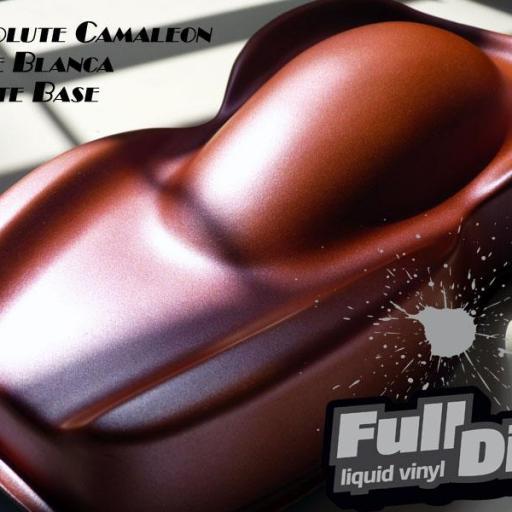 ABSOLUTE CAMALEON  FULL DIP [1]