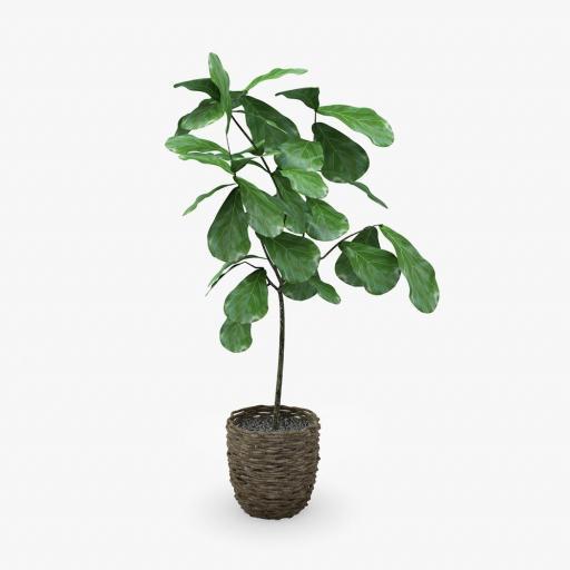 Planta interior 3
