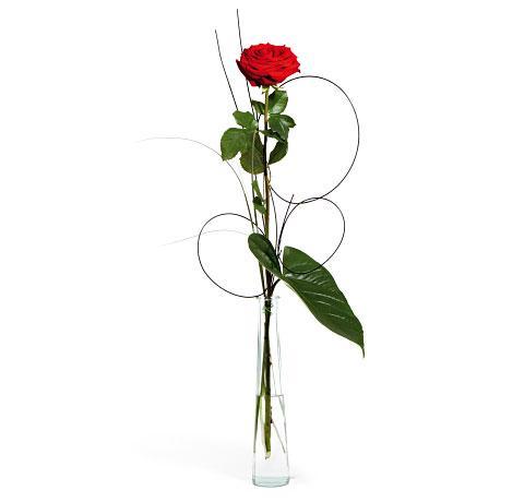 flor unica