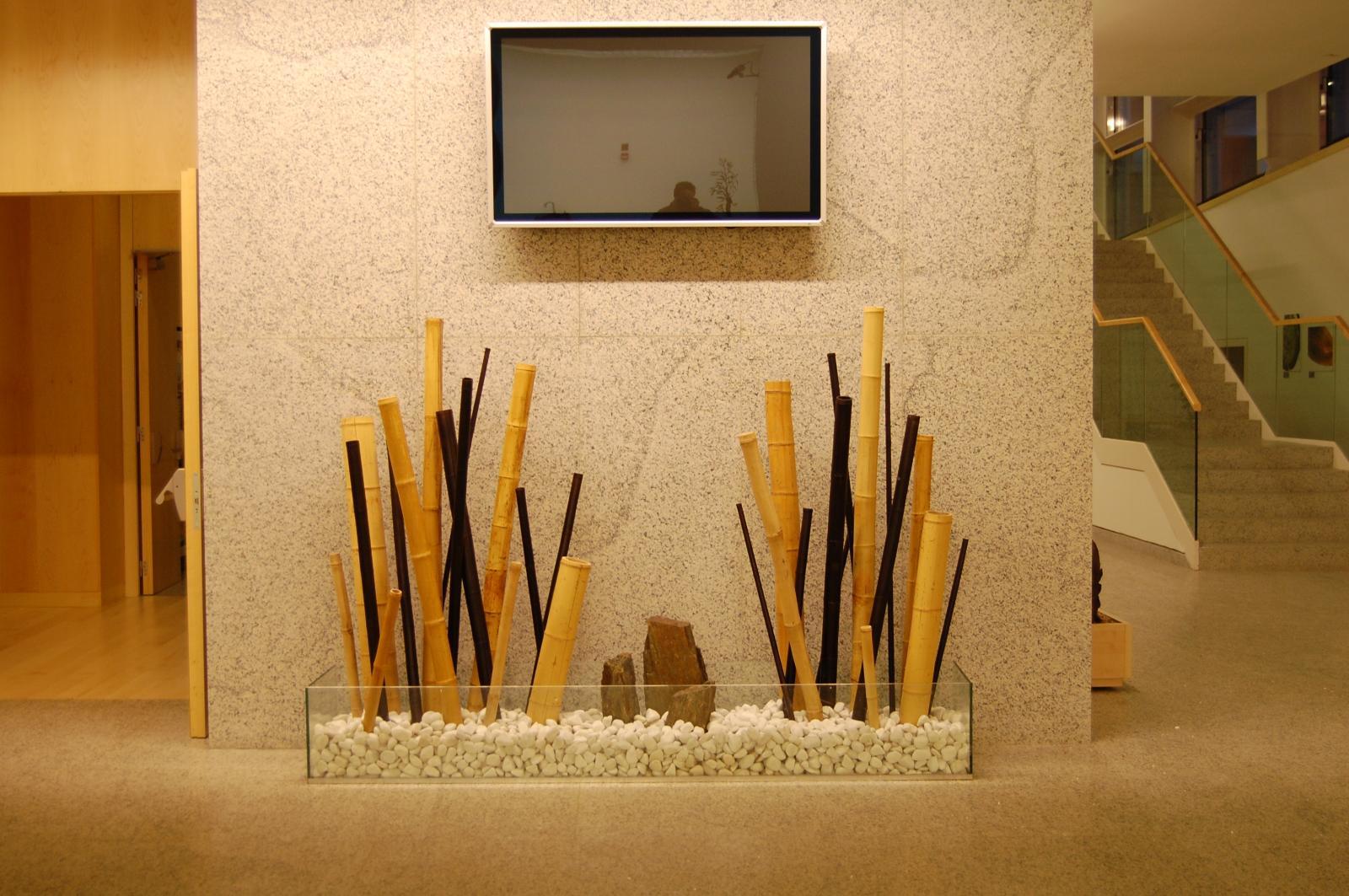montaje  de jardineras  de bambus para oficinas