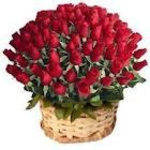Cestas  de rosas Rojas
