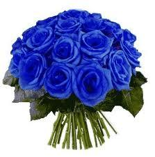 Ramo De Rosas Azules  12 unidades