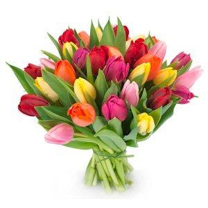 Flores 5