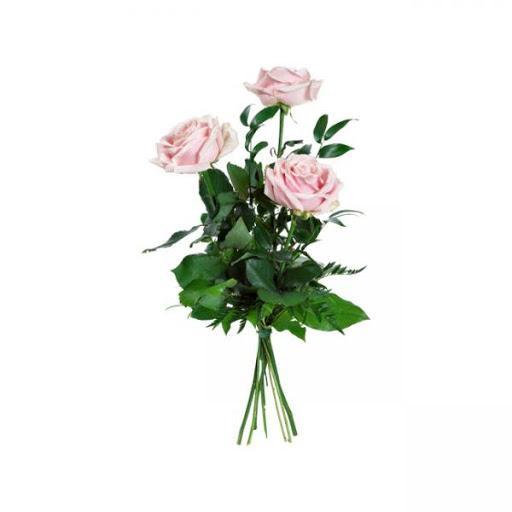 Flor 12