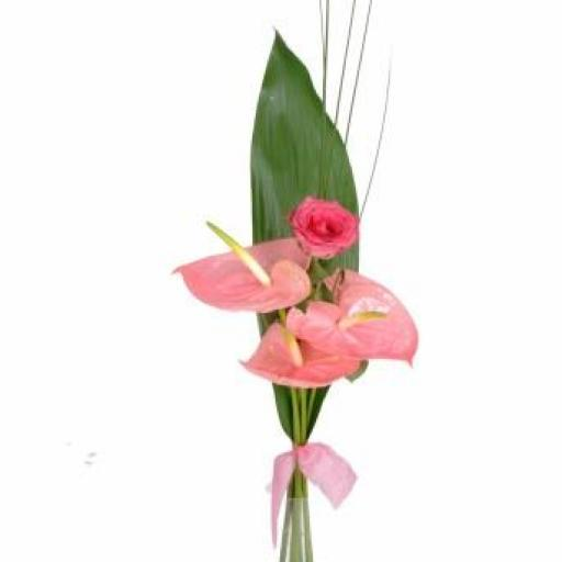 Flor 13 [0]