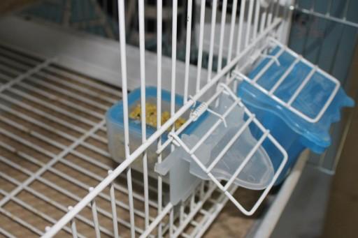 Comedero Cupé Ref.062 [2]