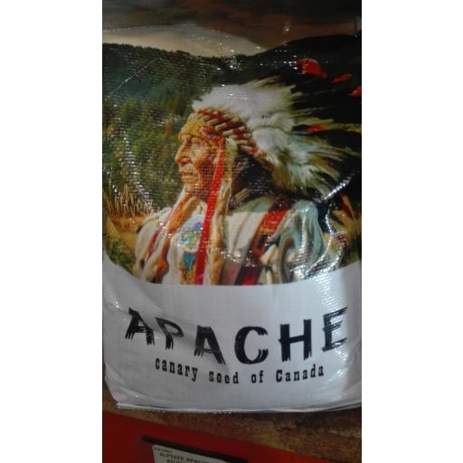 Alpiste Apache origen Canada 5kg