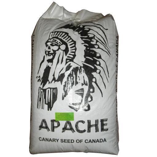 Alpiste Apache origen Canada para jilgueros y canarios