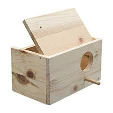 Nido de ninfas y cotorras de madera horizontal
