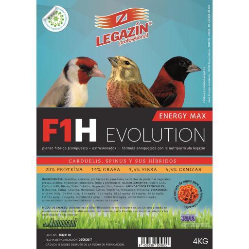 F1h energy max evolution 4kg