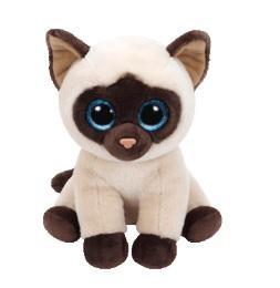 Jaden - Gato siamés bebés