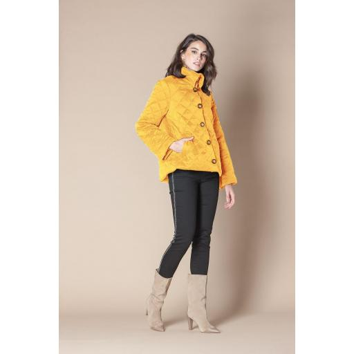 SCRIPTA  JACKET KISPO COLOR MOSTAZA REF 195049