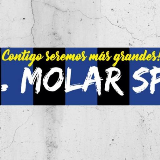 BUFANDA DE MOLAR SPORT [1]