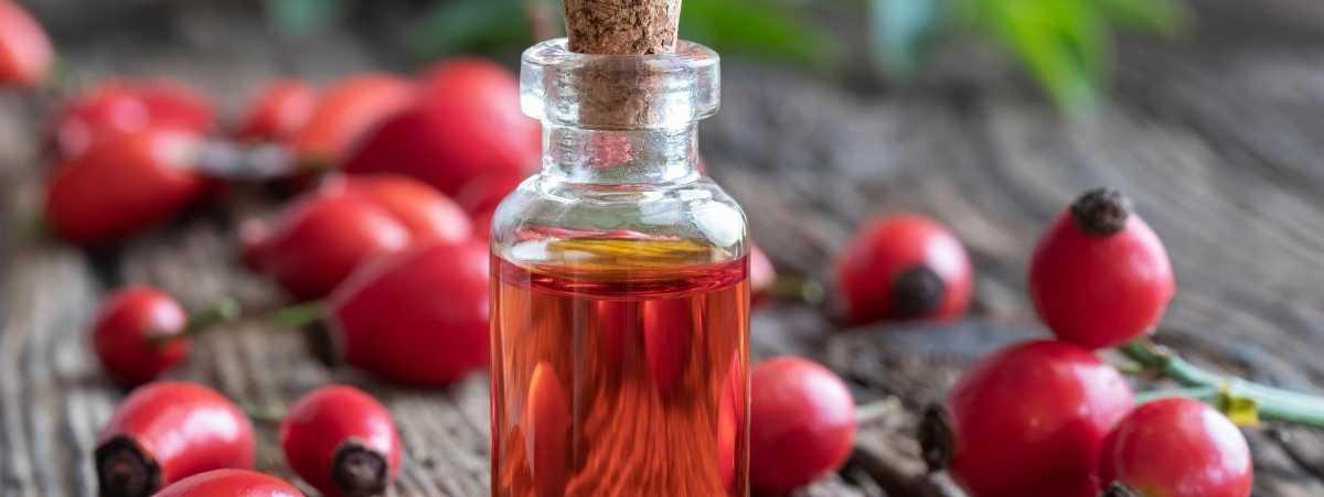 Beneficios del Aceite de Rosa Mosqueta para la Piel