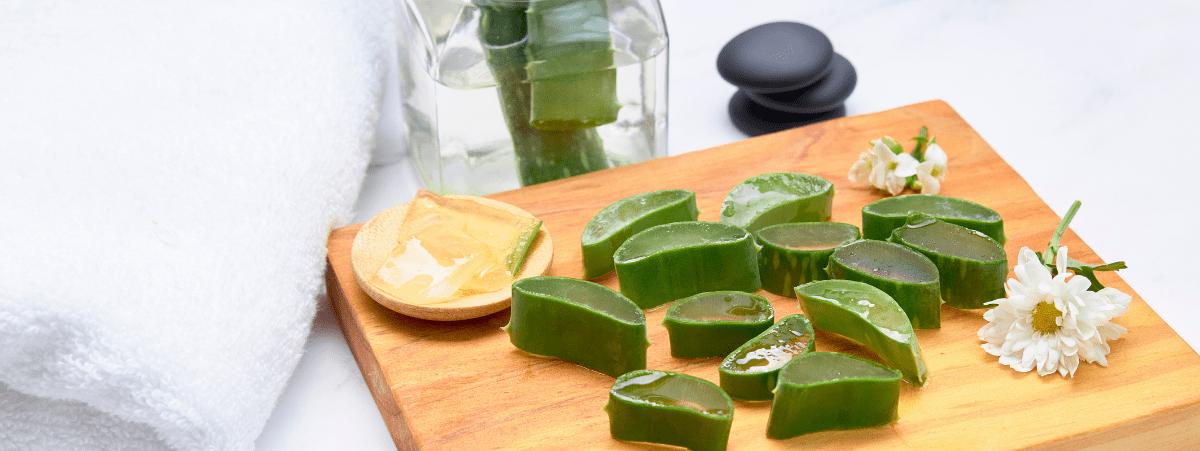 Beneficios del Aloe Vera para la Piel