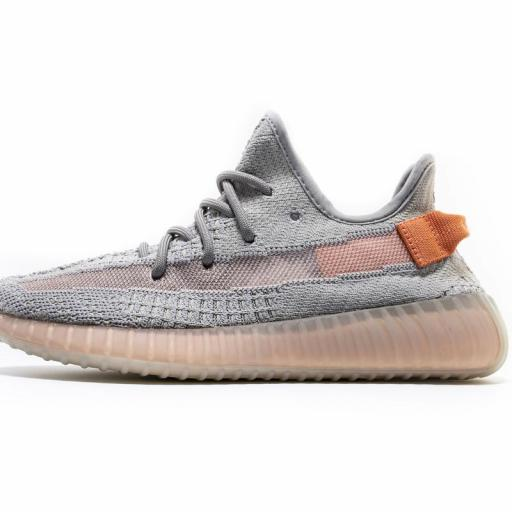 "YEEZY BOOST 350 V2 "" TRUE FORM  """