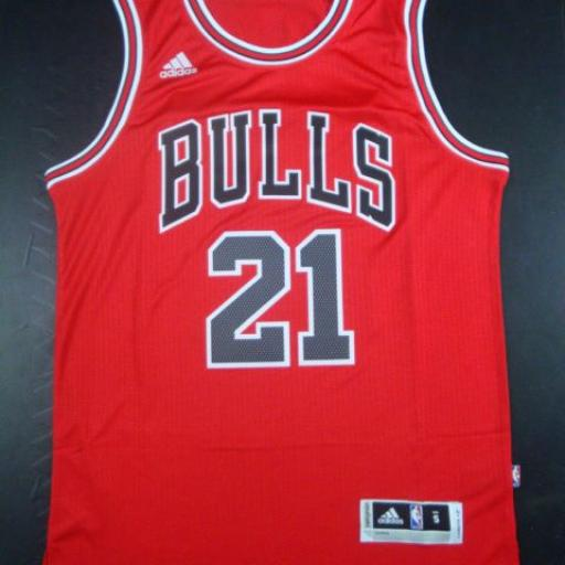 Camiseta Chicago Bulls 21