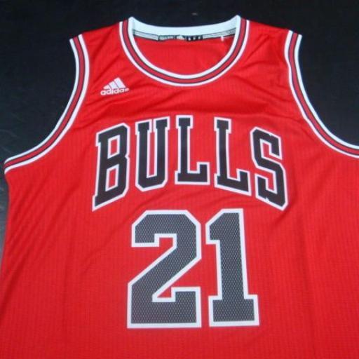 Camiseta Chicago Bulls 21 [1]
