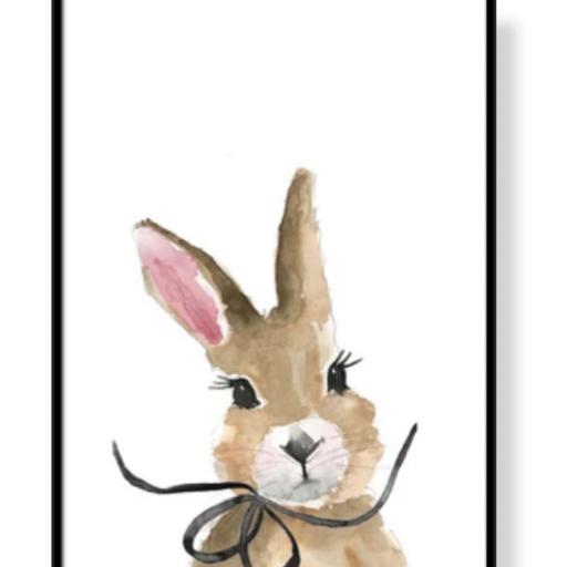 marco conejo, oso o jirafa [2]