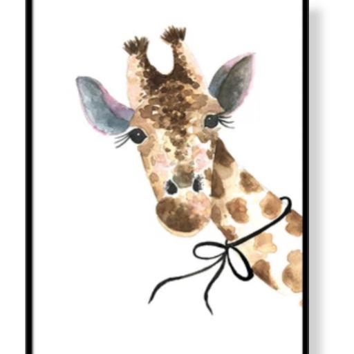 marco conejo, oso o jirafa [1]