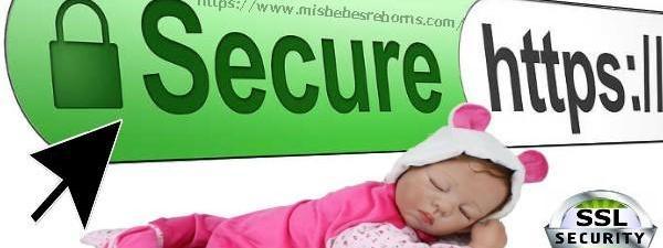 Mis Bebes Reborns ya cuenta con el Certificado de Seguridad SSl