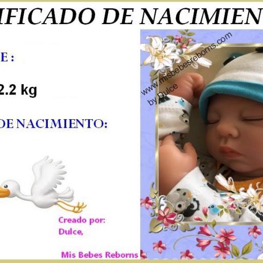 Certificado de Nacimiento Gratuito de HUGO